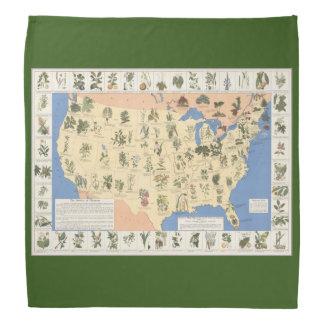 Map of Herbal Remedies bandana