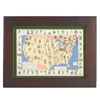 Map of Herbal Remedies keepsake box