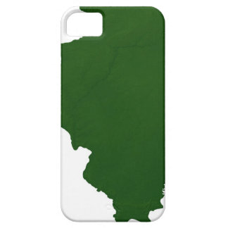 Map of Illinois Case For The iPhone 5
