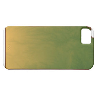Map of Kansas Barely There iPhone 5 Case