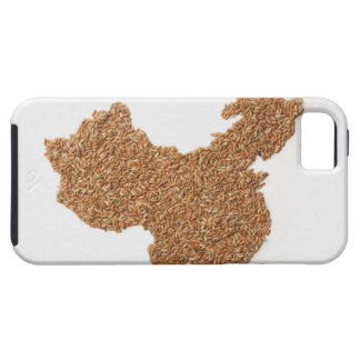 Map of Mainland China made of Glutinous Rice iPhone 5 Case