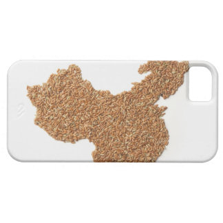 Map of Mainland China made of Glutinous Rice iPhone 5 Cover
