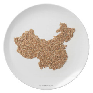 Map of Mainland China made of Glutinous Rice Party Plates