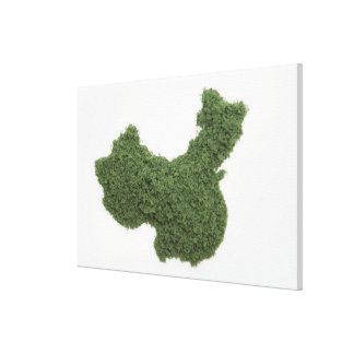 Map of Mainland China made of grass 2 Canvas Print
