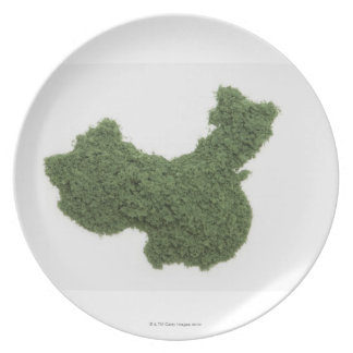 Map of Mainland China made of grass 2 Plate