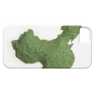 Map of Mainland China made of grass Case For The iPhone 5