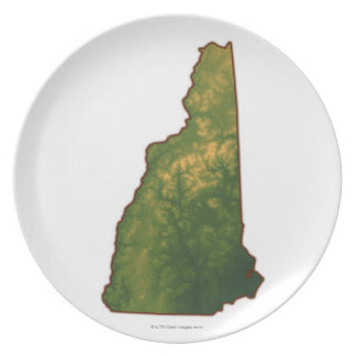 Map of New Hampshire 2 Plate