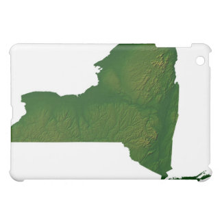 Map of New York State Cover For The iPad Mini