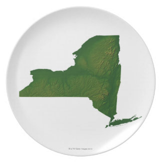 Map of New York State Plate