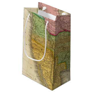 Map of North America 3 Small Gift Bag