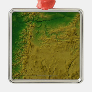 Map of Oregon Silver-Colored Square Decoration