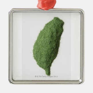 Map of Taiwan made of grass Silver-Colored Square Decoration