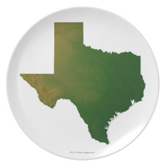 Map of Texas 2 Dinner Plate