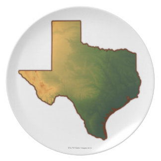 Map of Texas 4 Plate