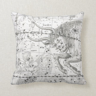 Map of The Constellations Plate XIV Cushion