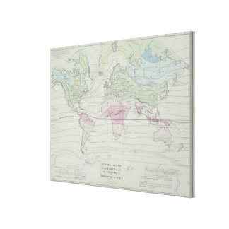 Map of the World 11 Canvas Print