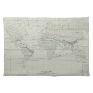 Map of the World 13 Placemat