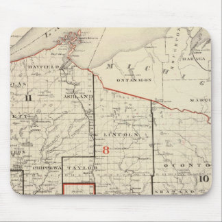 Map of Wisconsin Mouse Mat