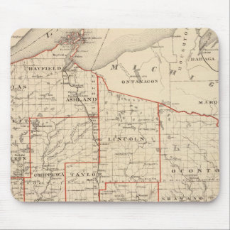 Map of Wisconsin, showing assembly districts Mouse Mat