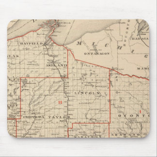 Map of Wisconsin showing senatorial districts Mouse Mat