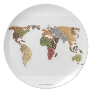Map of world made of various seeds plate