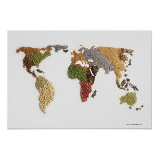 Map of world made of various seeds poster