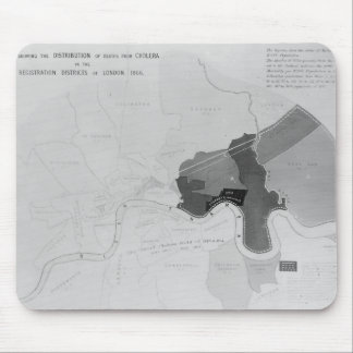 Map showing the Distribution of Deaths Mouse Mat