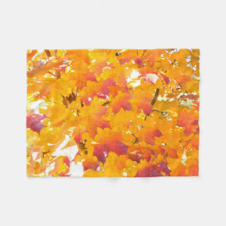 Maple (Acer) fall color Fleece Blanket