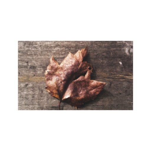 Maple Canvas Prints