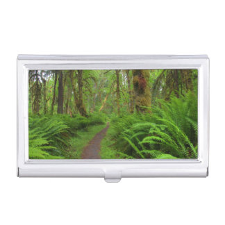 Maple Glade trail, ferns and moss covered Business Card Holder