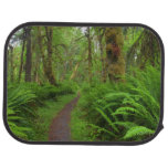 Maple Glade trail, ferns and moss covered Floor Mat