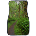 Maple Glade trail, ferns and moss covered Car Mat