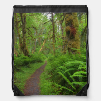 Maple Glade trail, ferns and moss covered Drawstring Bag