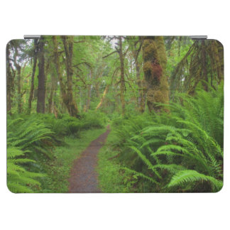 Maple Glade trail, ferns and moss covered iPad Air Cover