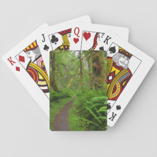 Maple Glade trail, ferns and moss covered Playing Cards