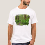 Maple Glade trail, ferns and moss covered T-Shirt