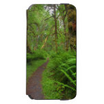 Maple Glade trail, ferns and moss covered Incipio Watson™ iPhone 6 Wallet Case