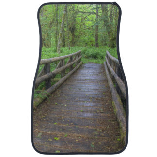 Maple Glade trail wooden bridge, ferns and Car Mat