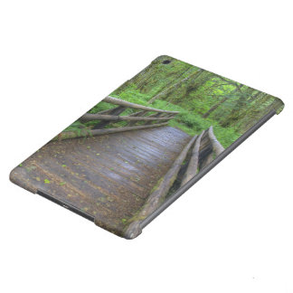 Maple Glade trail wooden bridge, ferns and iPad Air Covers