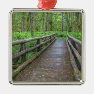 Maple Glade trail wooden bridge, ferns and Christmas Ornament