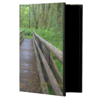 Maple Glade trail wooden bridge, ferns and Cover For iPad Air