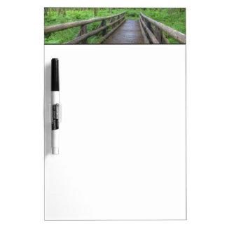 Maple Glade trail wooden bridge, ferns and Dry Erase Board