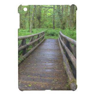Maple Glade trail wooden bridge, ferns and iPad Mini Cases