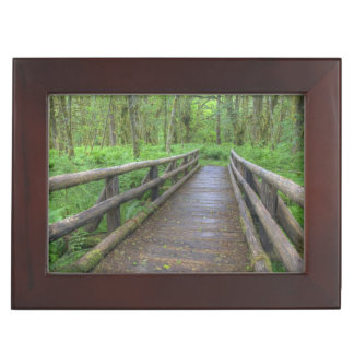 Maple Glade trail wooden bridge, ferns and Keepsake Box
