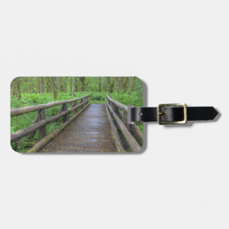 Maple Glade trail wooden bridge, ferns and Luggage Tag