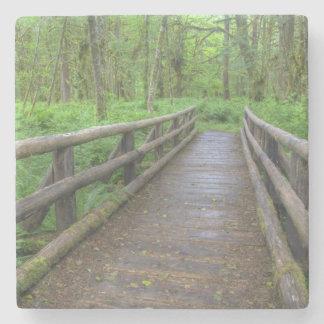 Maple Glade trail wooden bridge, ferns and Stone Coaster