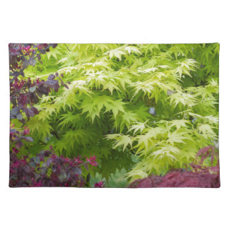 maple in summer placemat