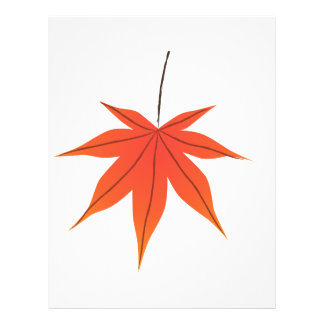 Maple Leaf 21.5 Cm X 28 Cm Flyer