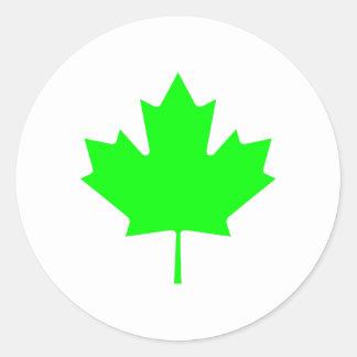 Maple Leaf Green LtTransp The MUSEUM Zazzle Gifts Round Sticker
