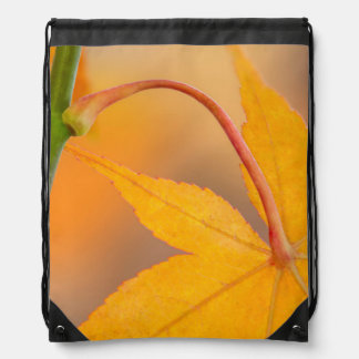 Maple Leaf in Autumn Drawstring Bag